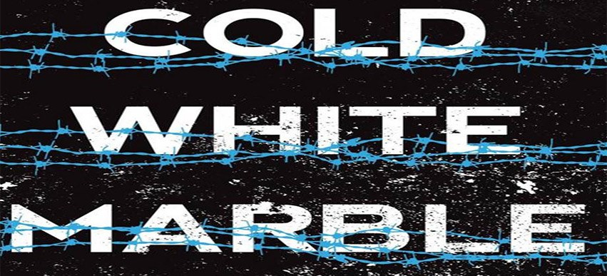 Cold White Marble: the next Divergent or Hunger Games? image